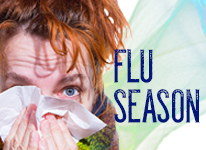 About this flu season